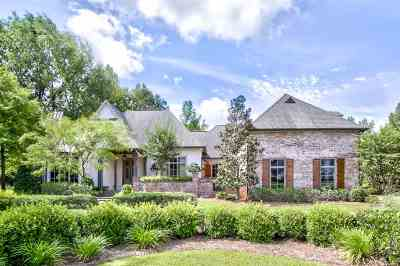 Ridgeland Single Family Home For Sale: 122 Summer Lake Dr