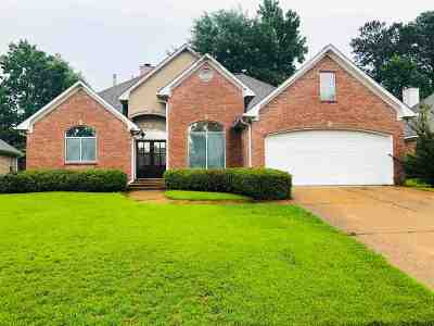 Rankin County Single Family Home For Sale: 609 Castlewoods Blvd