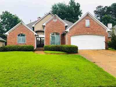 Brandon Single Family Home For Sale: 609 Castlewoods Blvd