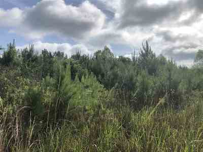 Residential Lots & Land For Sale: Dry Creek Rd