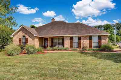 Byram Single Family Home For Sale: 2277 Meagan Dr