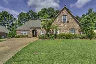 Madison Single Family Home Contingent/Pending: 225 Calhoun Dr