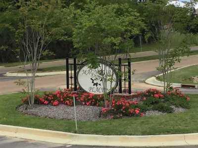 Rankin County Single Family Home For Sale: 206 Magnolia Place Cv