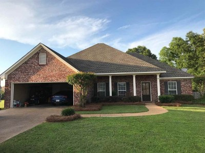 Rankin County Single Family Home For Sale: 247 John Martin Dr
