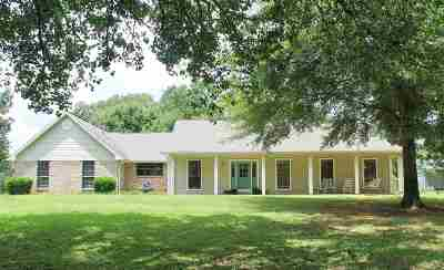 Hinds County Single Family Home For Sale: 2047 N Davis Rd