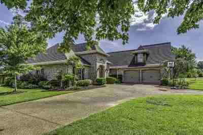 Rankin County Single Family Home For Sale: 101 Diamondback Ln