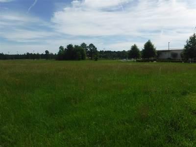 Flowood Residential Lots & Land For Sale: 1 Primos Park Dr