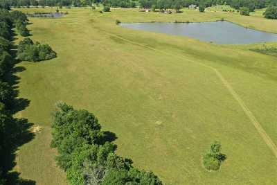 Canton Residential Lots & Land For Sale: 1 Hwy 16 West