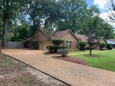 Jackson Single Family Home For Sale: 151 Yucca Dr