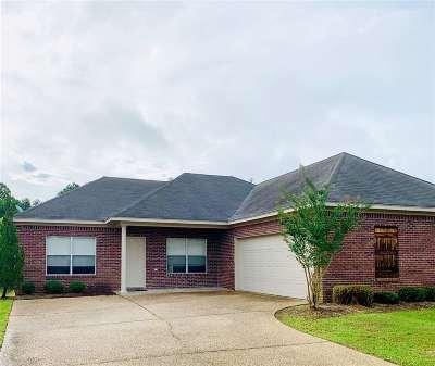 Rankin County Single Family Home For Sale: 533 Kate Lofton Dr
