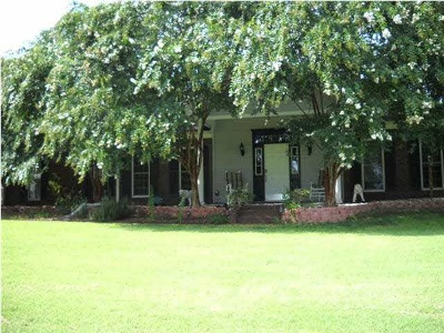 Simpson County Single Family Home For Sale: 383 Siloam Rd