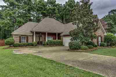 Rankin County Single Family Home For Sale: 527 Pelahatchie Shore Dr