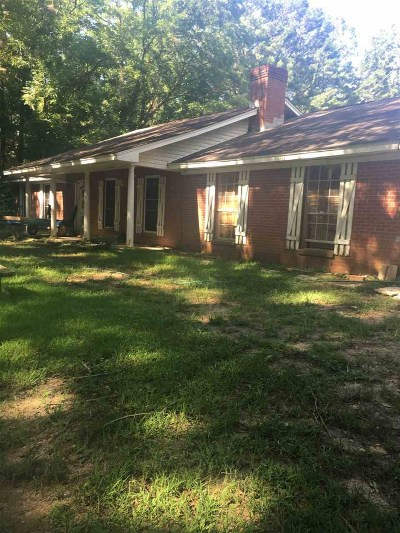 Brandon Single Family Home For Sale: 1274 Hwy 471