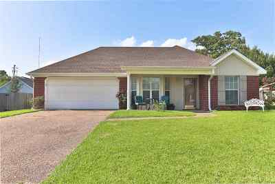 Pearl Single Family Home For Sale: 203 Hickory Cir