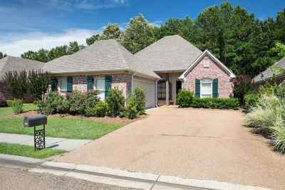 Ridgeland Single Family Home For Sale: 746 Orleans Cir