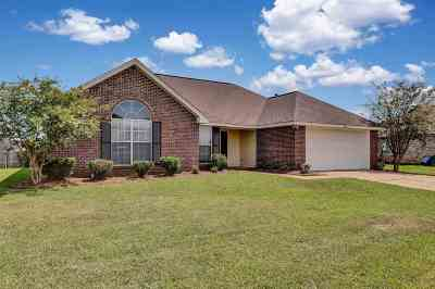 Byram Single Family Home Contingent/Pending: 232 Austin Cir