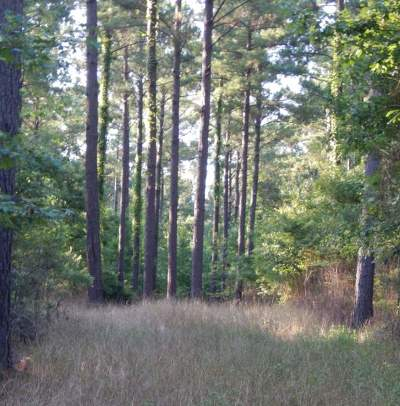 Jackson Residential Lots & Land For Sale: Greens Crossing Rd