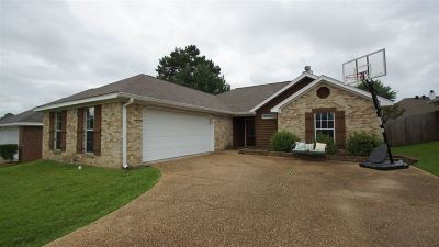 Single Family Home For Sale: 362 Briar View Dr