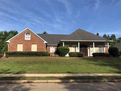 Ridgeland Single Family Home For Sale: 383 Red Eagle Cir