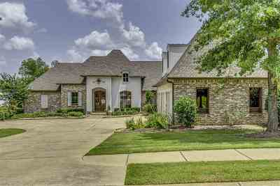 Madison MS Single Family Home For Sale: $749,000