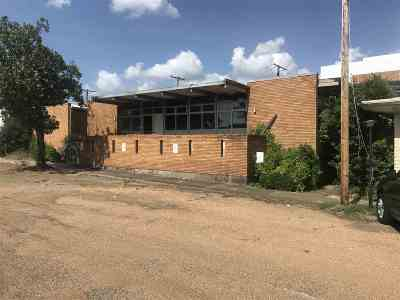 Hinds County Commercial For Sale: 500 E Woodrow Wilson Dr