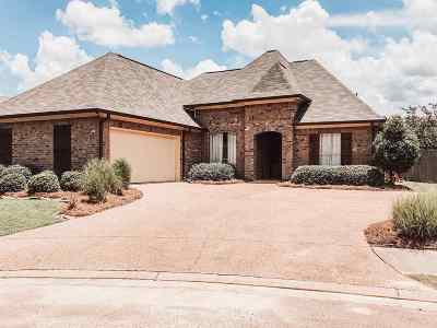 Brandon Single Family Home For Sale: 937 Frisky Dr