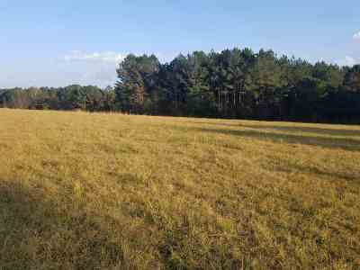 Canton Residential Lots & Land For Sale: 1016 Old Hwy 16