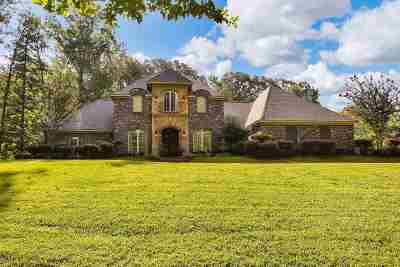 Ridgeland Single Family Home For Sale: 158 Woodland Springs Dr