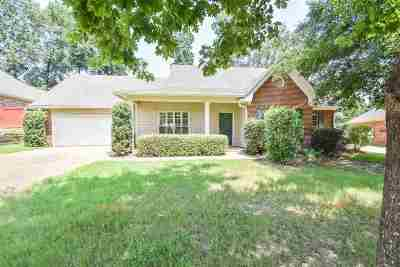 Hinds County Single Family Home For Sale: 104 Ellicot Burn