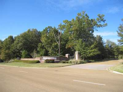 Ridgeland Residential Lots & Land For Sale: 627 Highland Colony Parkway