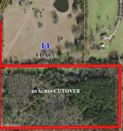 Leake County Residential Lots & Land For Sale: 415 Pine Rd