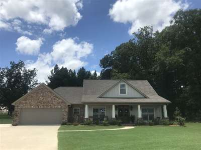 Rankin County Single Family Home For Sale: 206 Evelyn Lane