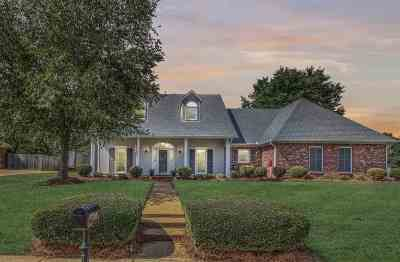 Ridgeland Single Family Home For Sale: 357 Red Eagle Cir