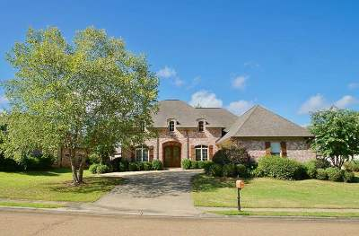 Madison MS Single Family Home For Sale: $328,900
