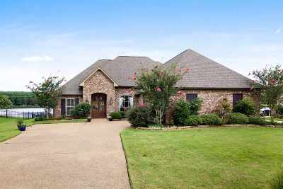 Madison MS Single Family Home For Sale: $349,900