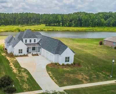 Ridgeland Single Family Home For Sale: 305 Highland Park Blvd