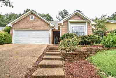 Hinds County, Madison County, Rankin County Single Family Home For Sale: 207 Huntington Hill Dr