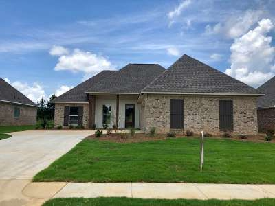 Canton Single Family Home For Sale: 412 E Buttonwood Lane