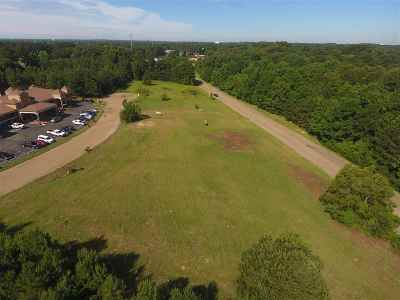 Pearl Residential Lots & Land For Sale: 187 Country Place Parkway