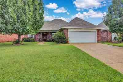 Brandon Single Family Home For Sale: 231 John Martin Dr