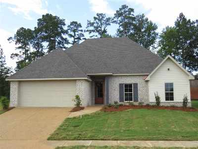 Rankin County Single Family Home For Sale: 210 Cowan Creek Dr
