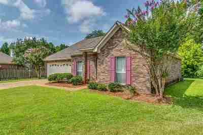 Rankin County Single Family Home For Sale: 1103 Arbor Pl