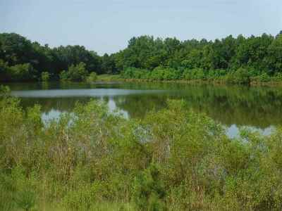 Canton Residential Lots & Land For Sale: Canton Parkway