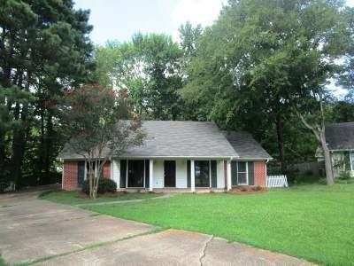 Ridgeland Single Family Home For Sale: 206 Sarah Cv