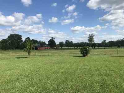 Rankin County Single Family Home For Sale: 382 Barker Rd