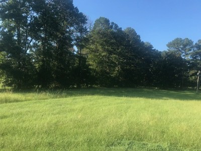 Jackson Residential Lots & Land For Sale: 31 Sylwood Pl