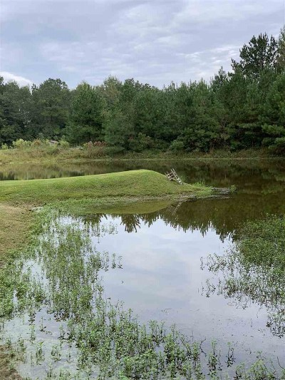 Smith County Residential Lots & Land For Sale: 1566 Scr 128