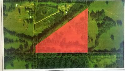 Hinds County Residential Lots & Land For Sale: D Newman Rd