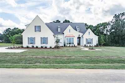 Rankin County Single Family Home For Sale: 730 Cotton Creek Tr