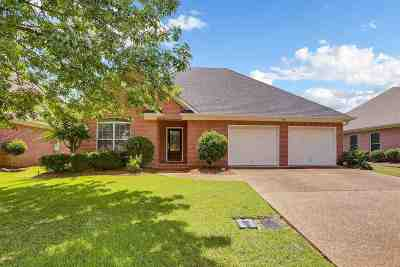 Pearl Single Family Home Contingent/Pending: 557 Spring Lake Dr